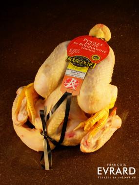 Poulet jaune de Bourgogne effilé