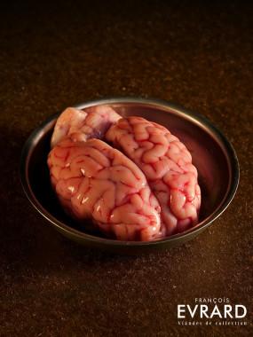 Cervelle d'Agneau Origine France